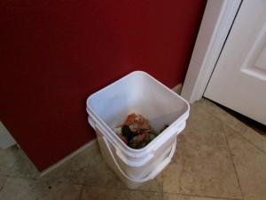 The scrap bin in my kitchen.